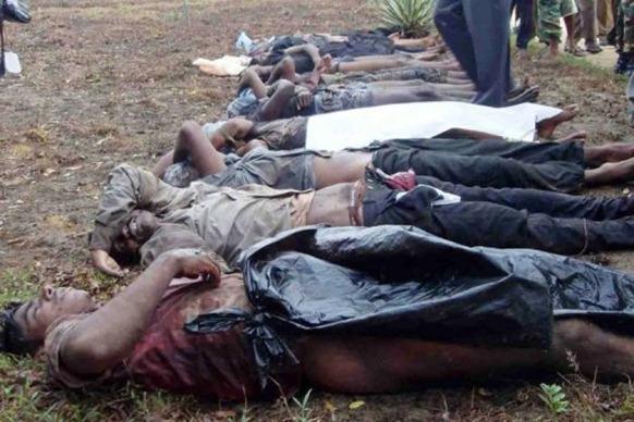 lankasri tamil news bodies of tamil tiger rebels killed by sri lankan