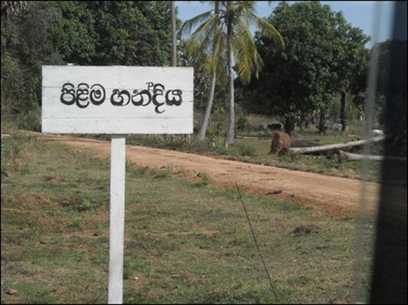 Sinhala name given to a junction: 'Pilima Handiya'