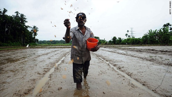 A Sri Lankan farmer scatters seeds as he sows a paddy field in a Colombo suburb in early May. cnn