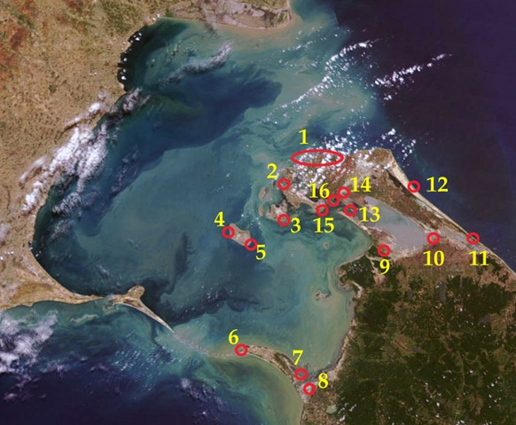 Sri Lanka's large military establishments that choke Jaffna peninsula and threaten Indian security. Sinhala colonisation is carried out in places no 11, 13, 14, and 16. The locations: 1. High Security Zone, Valikaamam North, 2. Kaarainakar naval base, 3. Vallan, Pungkudutheevu, 4. Periyathu'rai and Saamiththoadda-munai, Delft (Key location for Kachchatheevu and Rameswaram), 5. Kunthavadi, Delft, 6. Thalai-mannaar, 7. Mannaar Fort, 8. Tha'l'laadi, 9. Poonakari Fort, 10. Elephant Pass, 11. Vettilaikkea'ni, 12. Naakarkoayil, 13. Ariyaalai East and the opposite sandbar Ma'n'niththalai, 14. Naavatkuzhi, 15. Ma'ndaitheevu and 16. Jaffna city. The innumerable small military posts and the newly planned cantonments in Vanni are not shown in the map. [Satellite Image courtesy: NASA, Visible Earth. Legend by TamilNet]