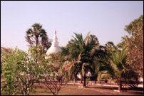 Buddhist Stupa at Thiruvadinilai