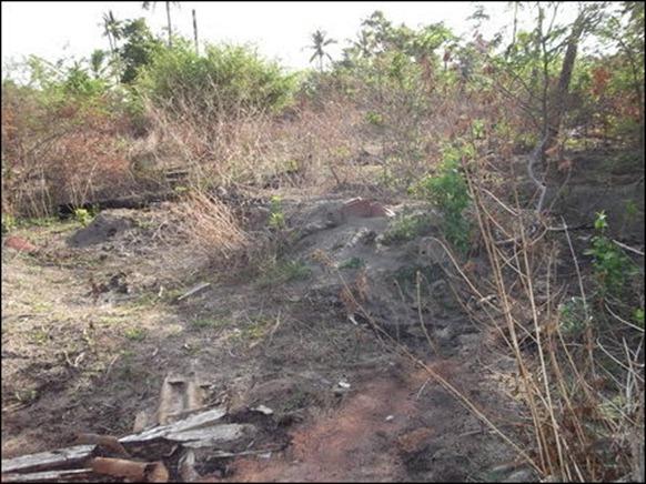 Aananthapuram_2012_04_100186_445