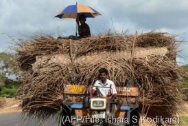 Sri Lankan Tamil farmers ride on a tractor in the former war zone district of Mullaittivu on October 21 (AFP/File, Ishara S.Kodikara)