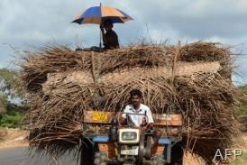 Sri Lankan Tamil farmers ride on a tractor in the former war zone in the island?s northeast on October 21, 2012 (AFP/File, Ishara S.Kodikara)