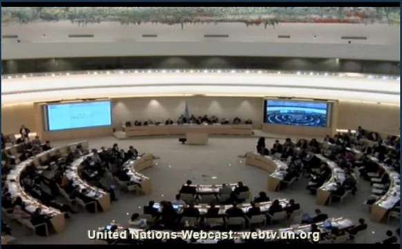 This March 21, 2013 screen grab from UN Web TV shows the U.N. Human Rights Council in session.