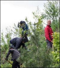 Canada_2013_May_tree_planting_01_103664_200