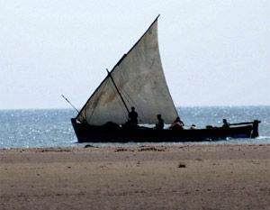 Sri Lankan navy on Sunday detained 33 fishermen from Rameswaram.